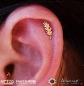 14k Feather by Auris